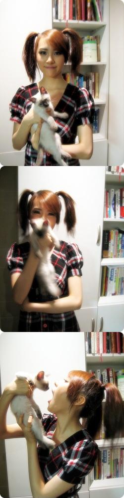 sunmi_cat